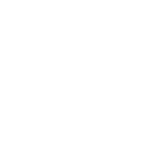 Waidringerhof