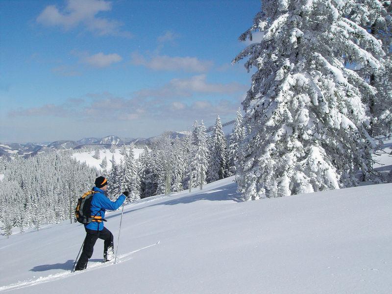 Winterwandern Waidring