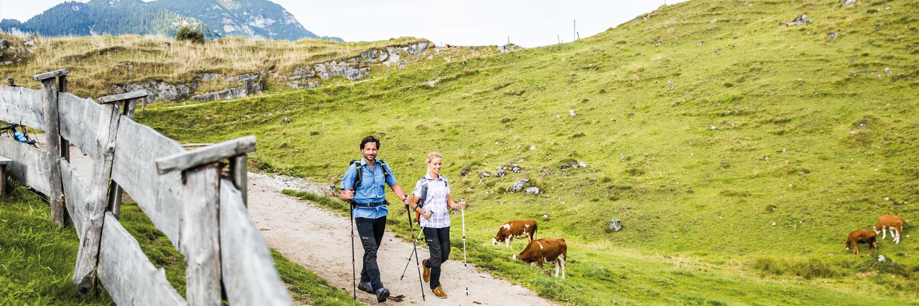 Wandern im PillerseeTal